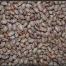 Thumbnail image for Prespes' Beans